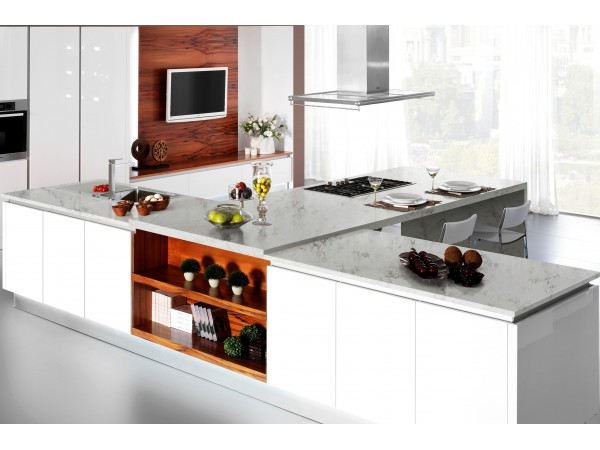 M41 Organic White Quartz Countertops