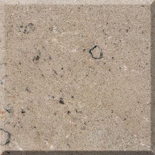 M05 Shiitake Quartz Slab
